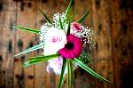DSC 1507 150x99 Flower photography at Poppy floral design in Marple